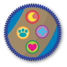 Wearing a merit badge