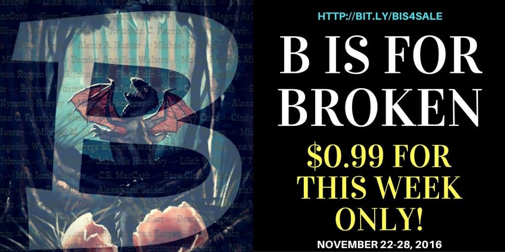 B is for Broken on Sale